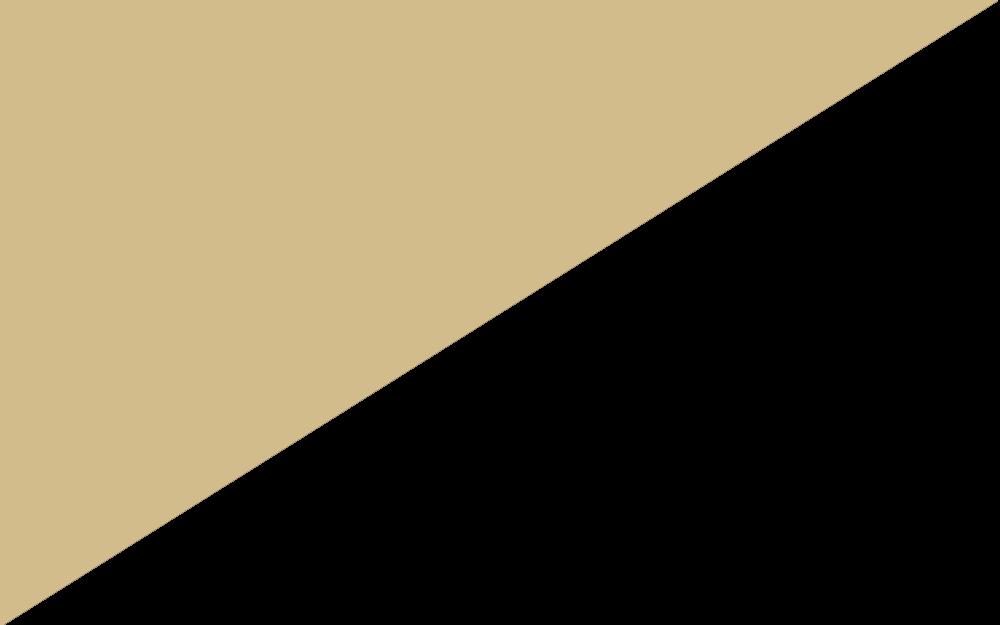 Beige/Noir